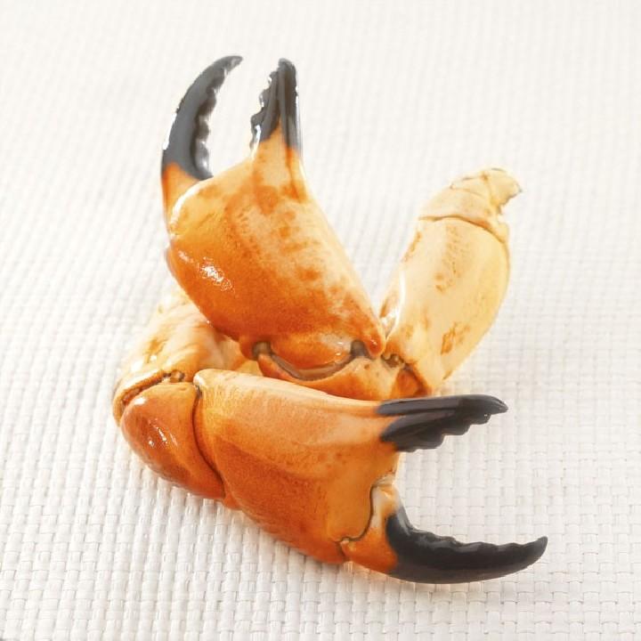 Boques de bou de mar cuites