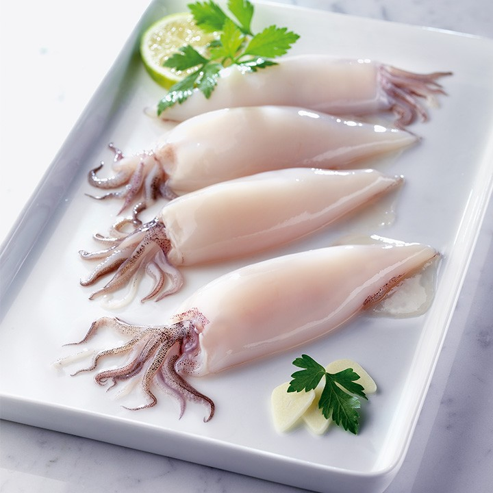 Calamar patagónico limpio