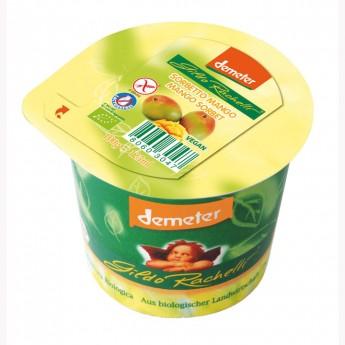 Tarrina sorbete mango Bio