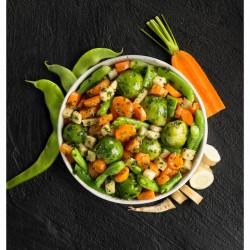 Mezcla verduras plantas aromáticas