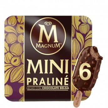 Mini Magnum Praline Frigo