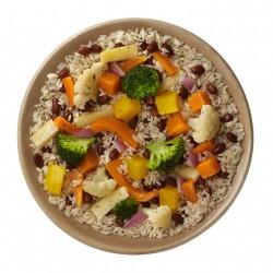 Arròs vegetal complet