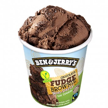Terrina Ben&Jerry's Vegan Xoco Fudge Brownie