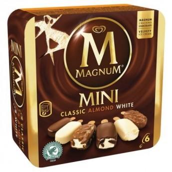 Surtido mini Magnum Frigo