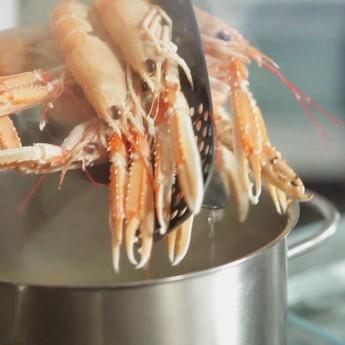 Trucs per a cuinar marisc